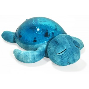 TRANQUIL TURTLE AQUA Cloud b
